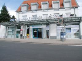 Bild der VR Bank Main-Kinzig-Büdingen eG, Eichen